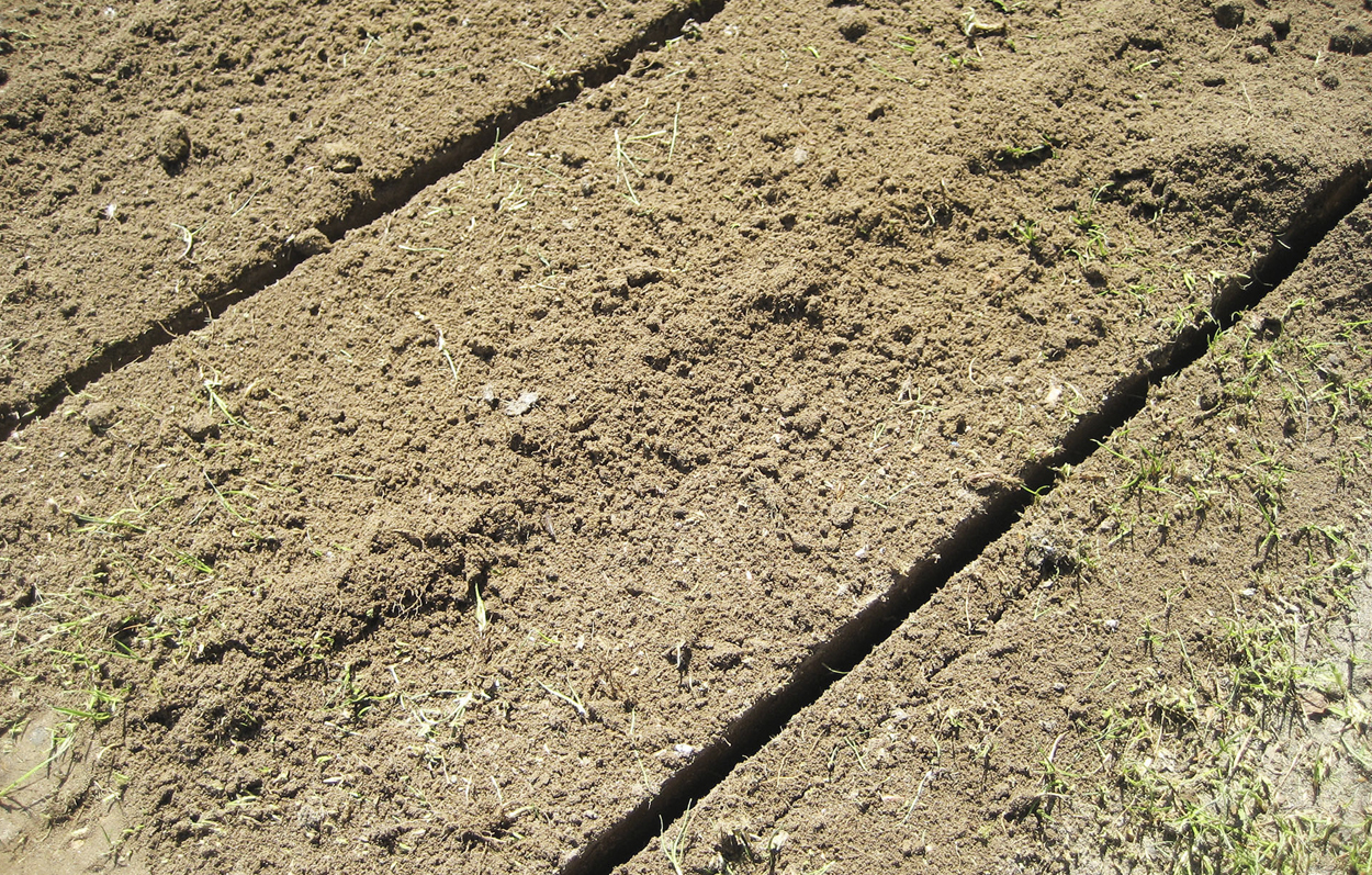 <b>Dress and Aerate</b><p></p>The EcoDresser can dig out and use the soil from from the top layer while leveling out the surface at the same time.